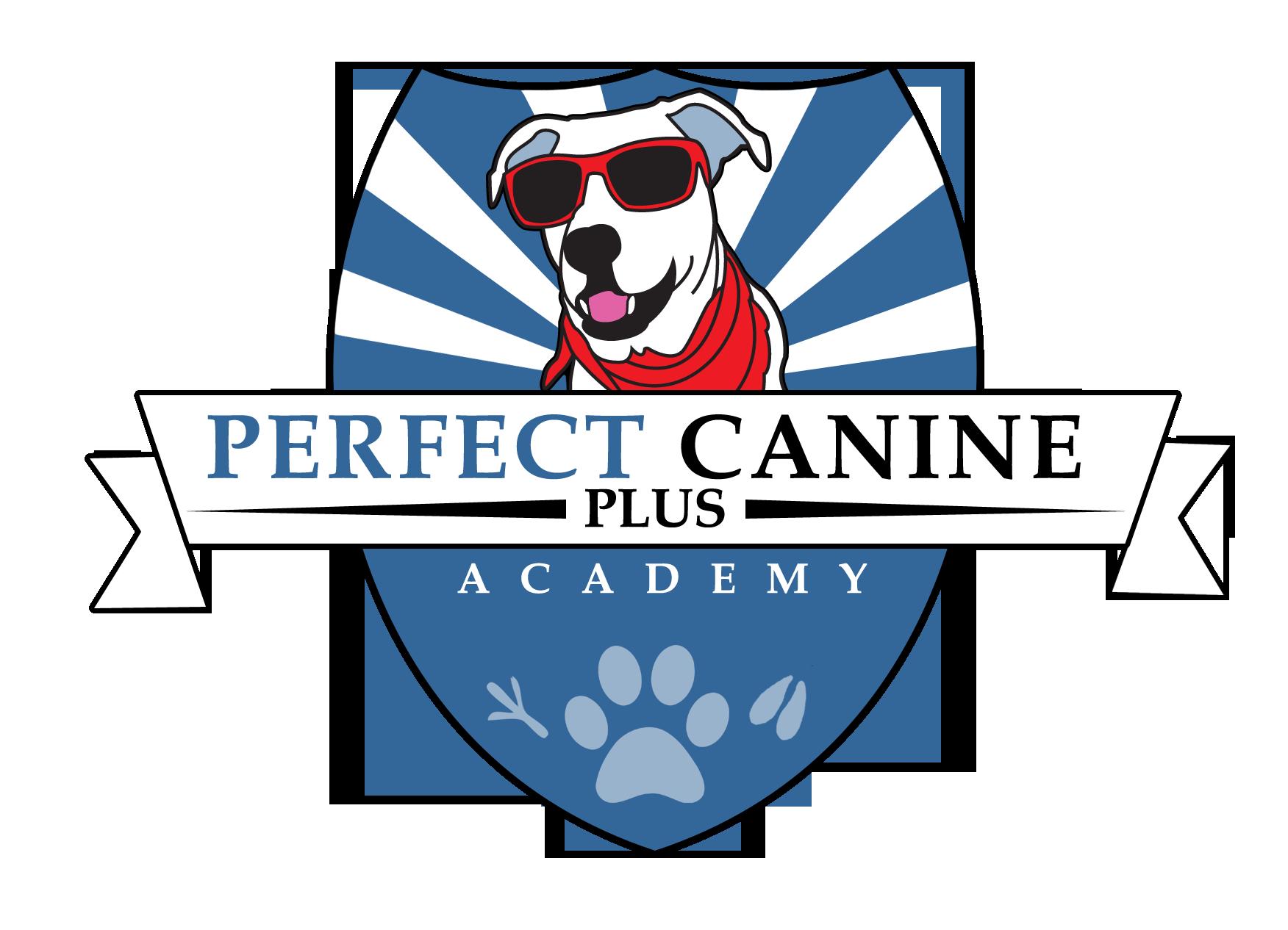 Morgan Hill Dog Training